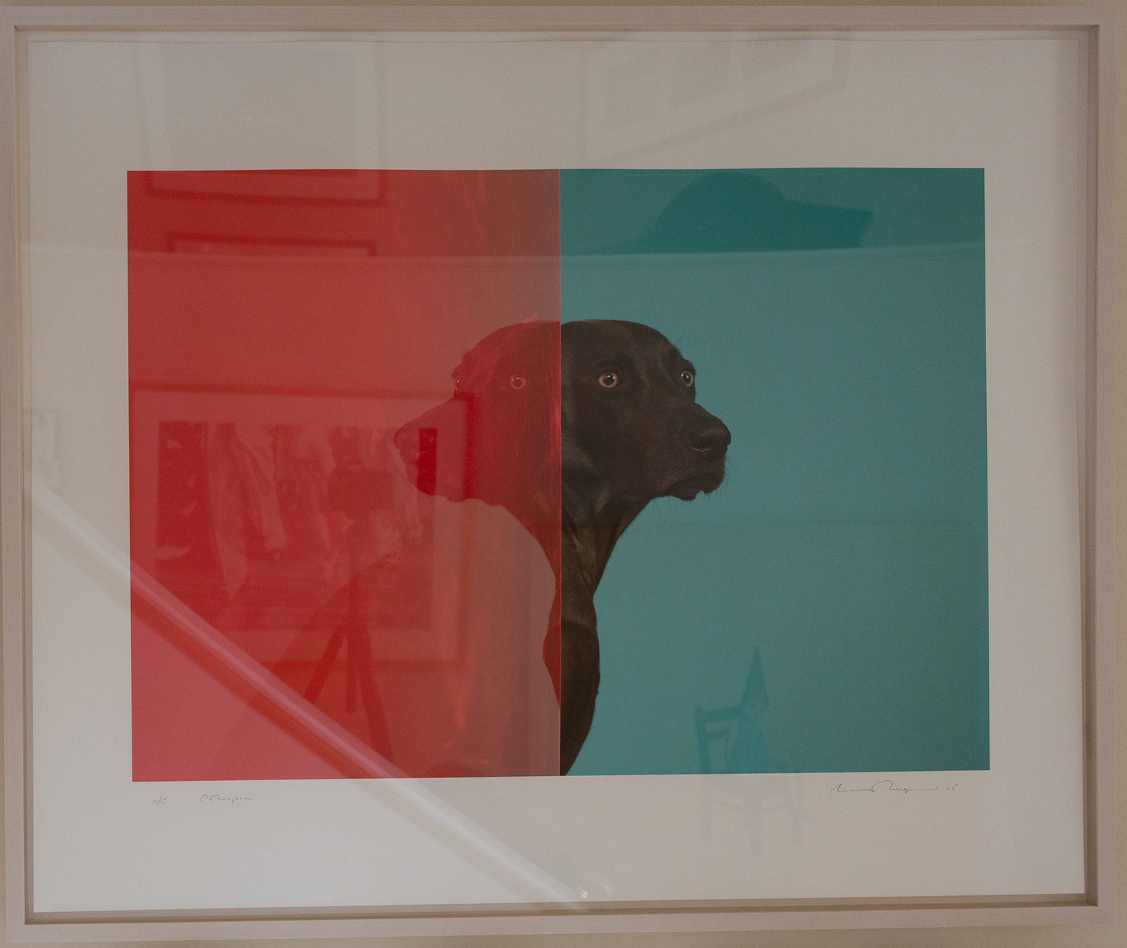 "William Wegman ""Ethiopia"""