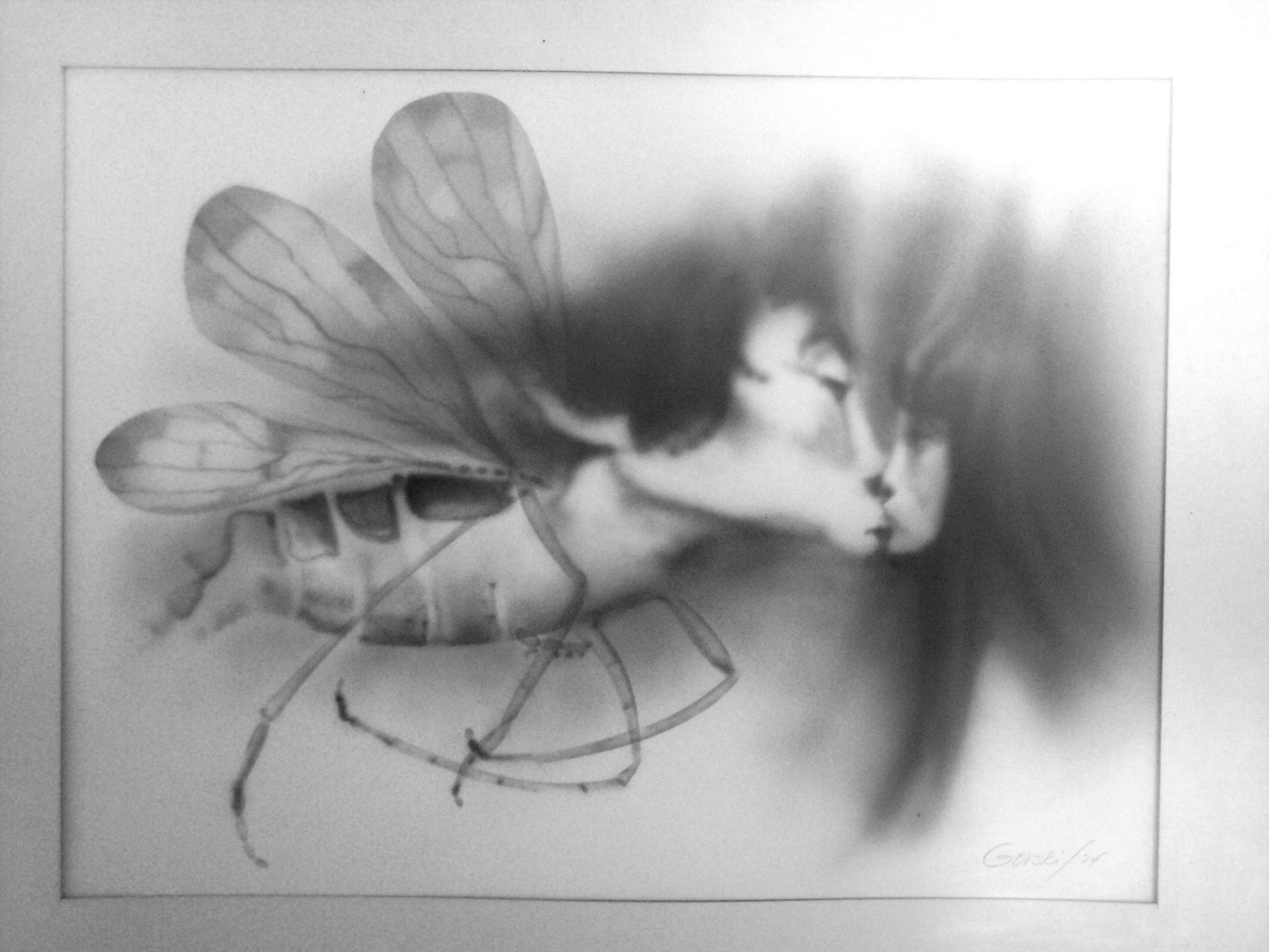 Lovebugs_2.jpg