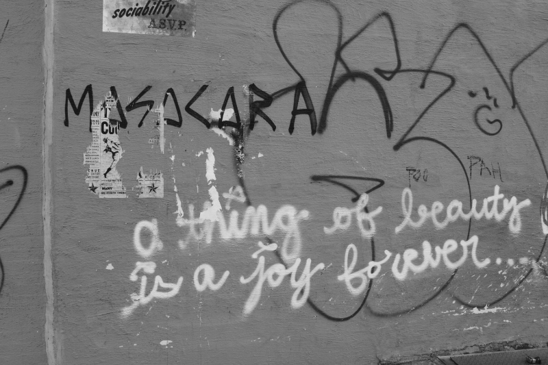 Because life is beautiful and creating life creates a joy forever