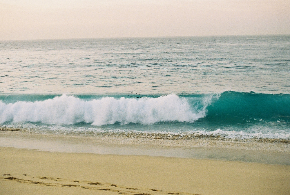 Early morning waves in Cabo, a lifetime ago, on film