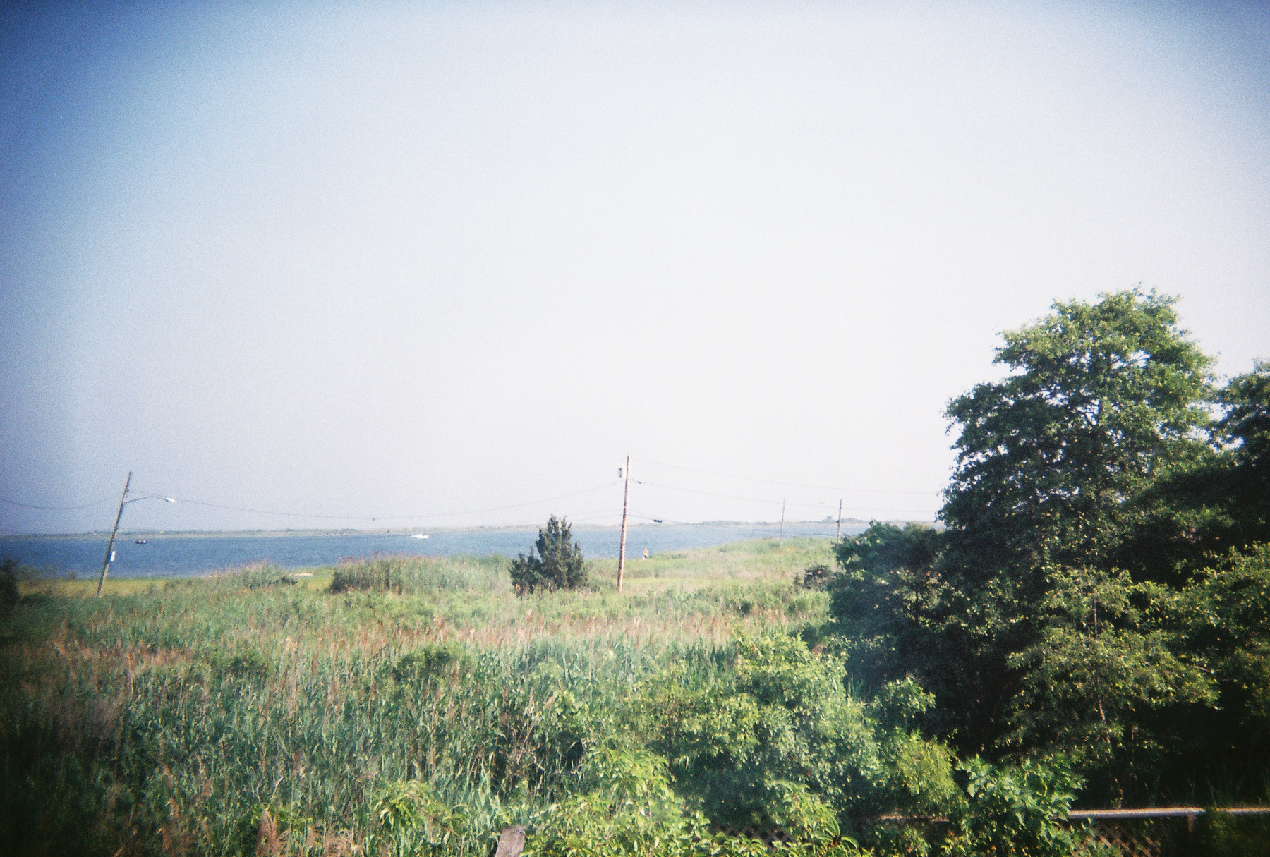 View from old house.jpg