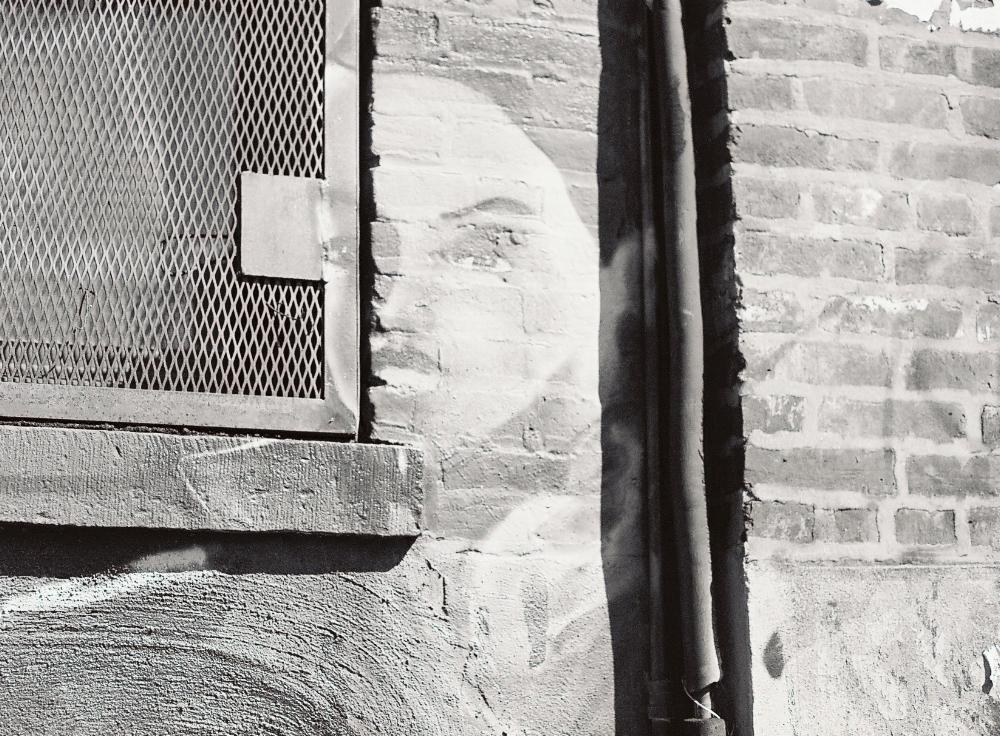 Beautiful Face in Wall.jpg