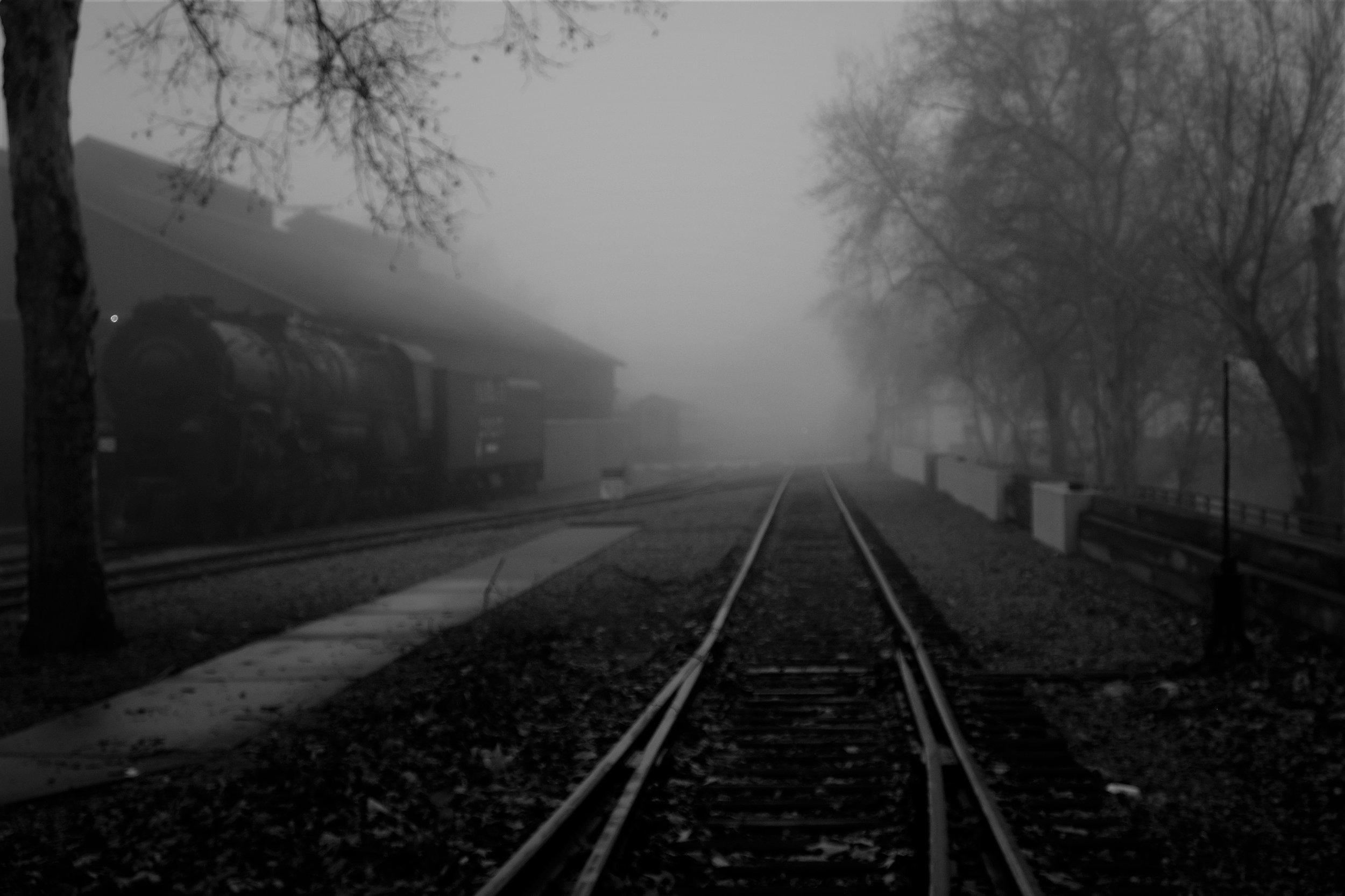 Fog Sac 2019 (25).JPG