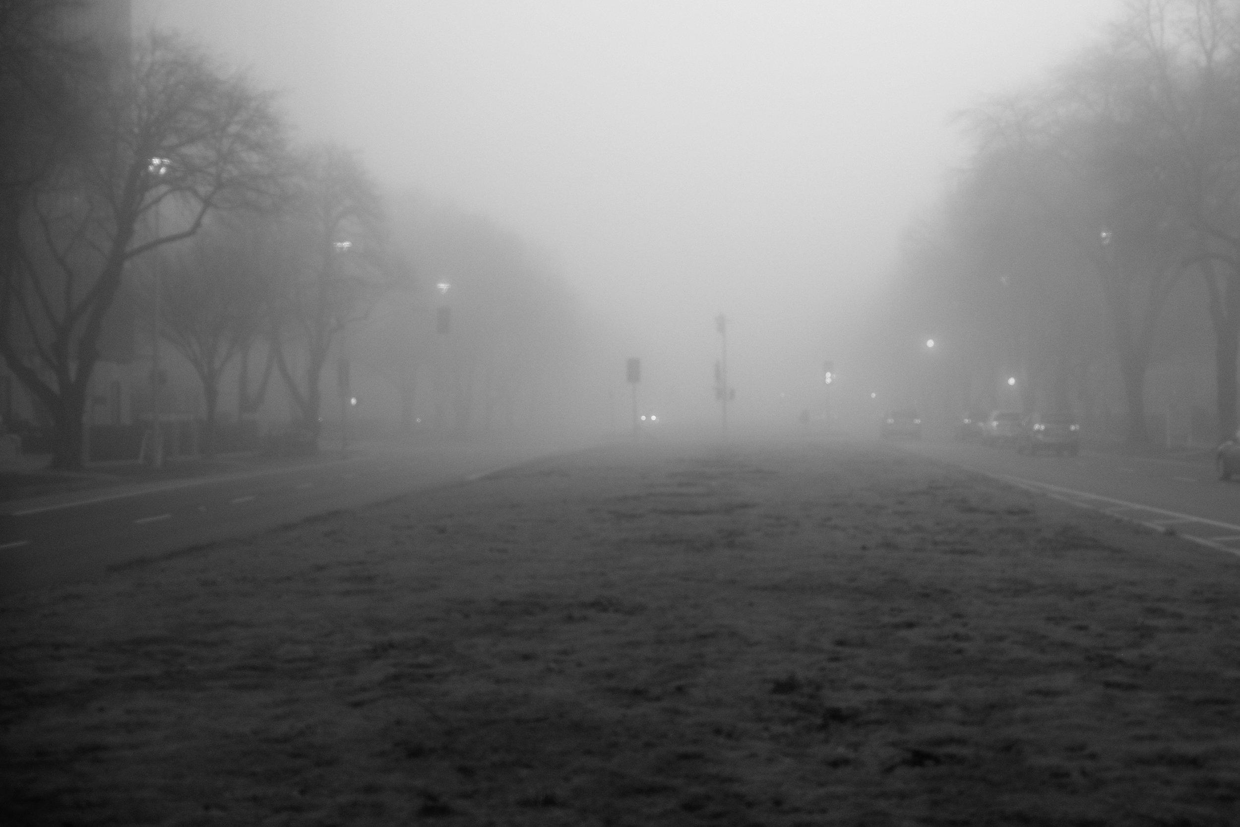 Fog Sac 2019 (3).JPG
