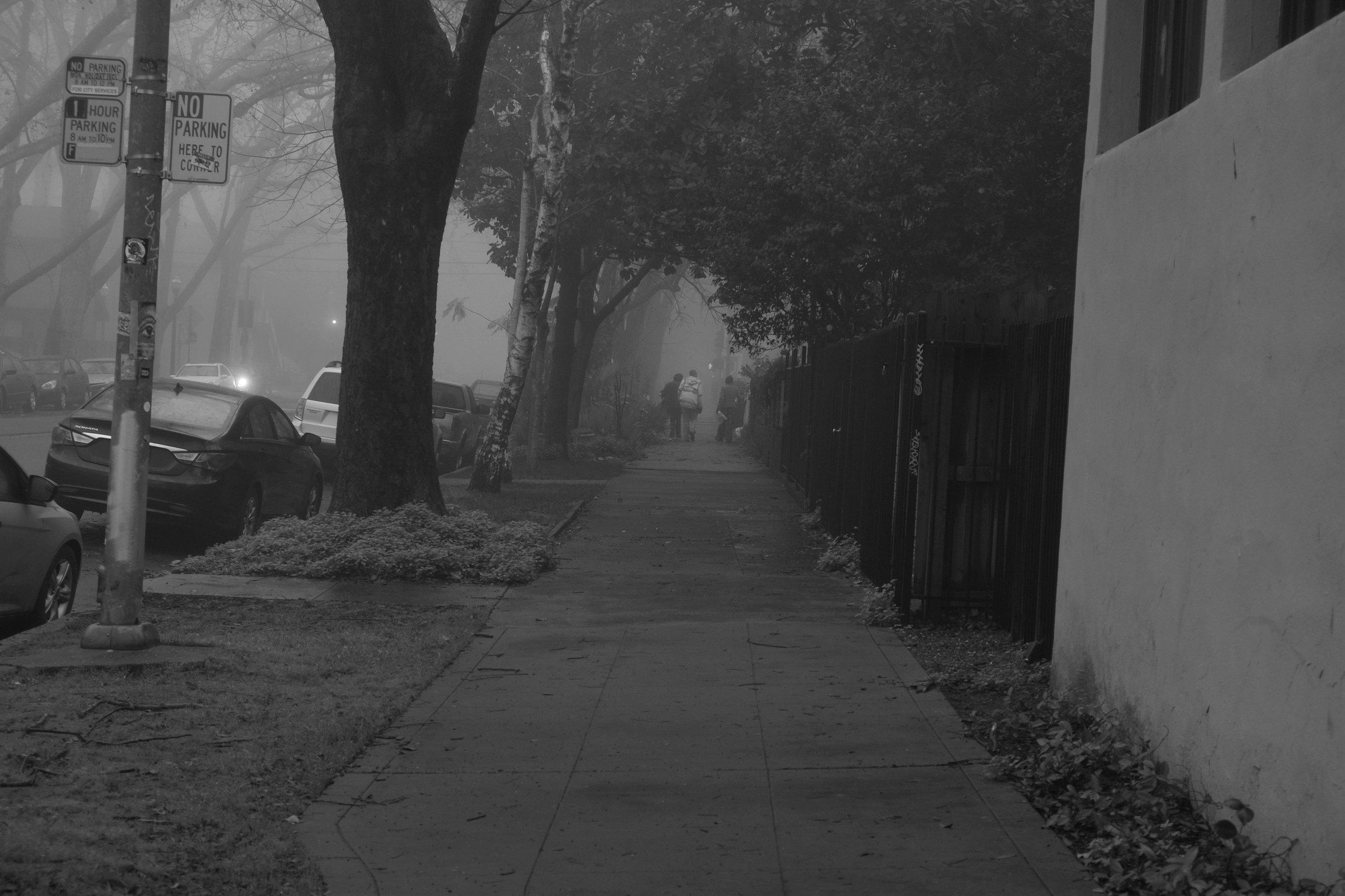 Fog Sac 2019 (10).JPG