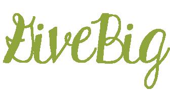 2016-17 GiveBig