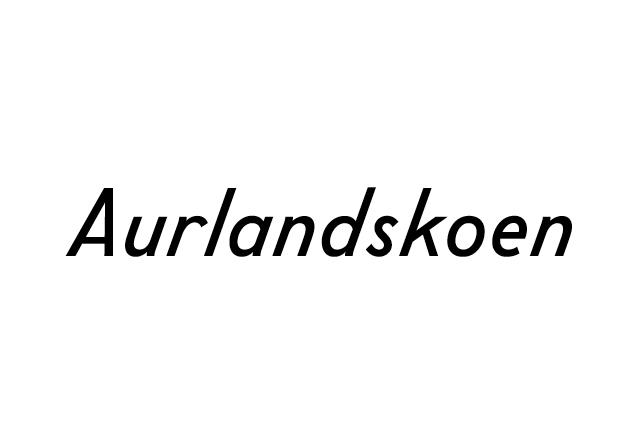 NewWork_Aurlandskoen2.jpg