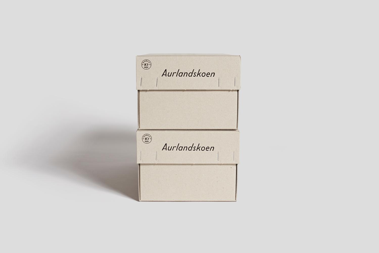 newworkstudio-aurlandskoen-3.jpg