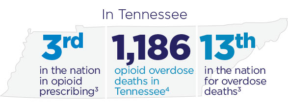 32016 Center for Disease Control and Prevention 42016 Tennessee Department of Health