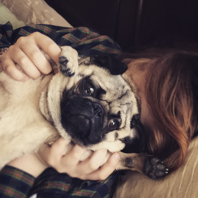 Pug and Son