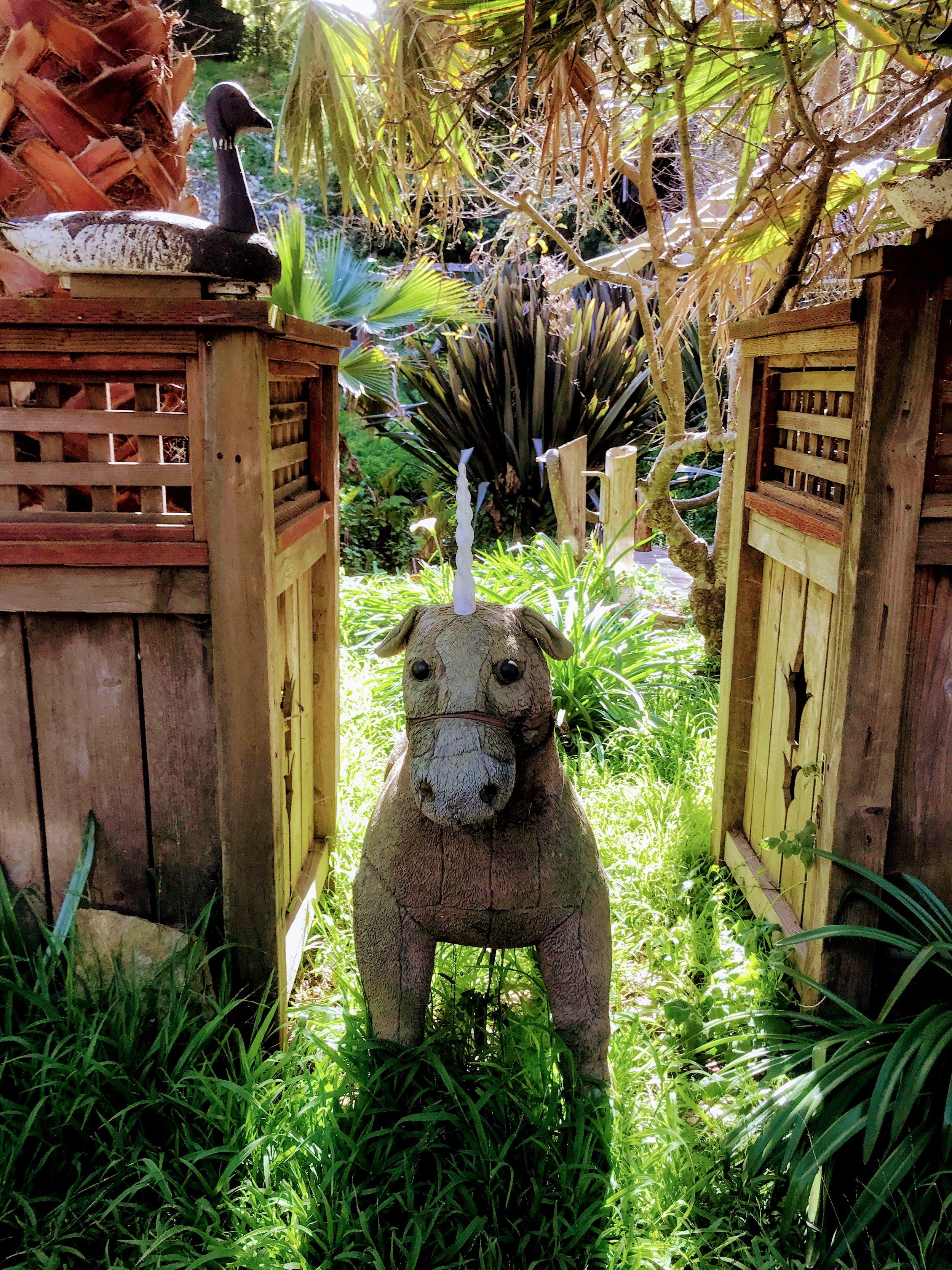 Unexpected Unicorn: Chronic Illness Blog