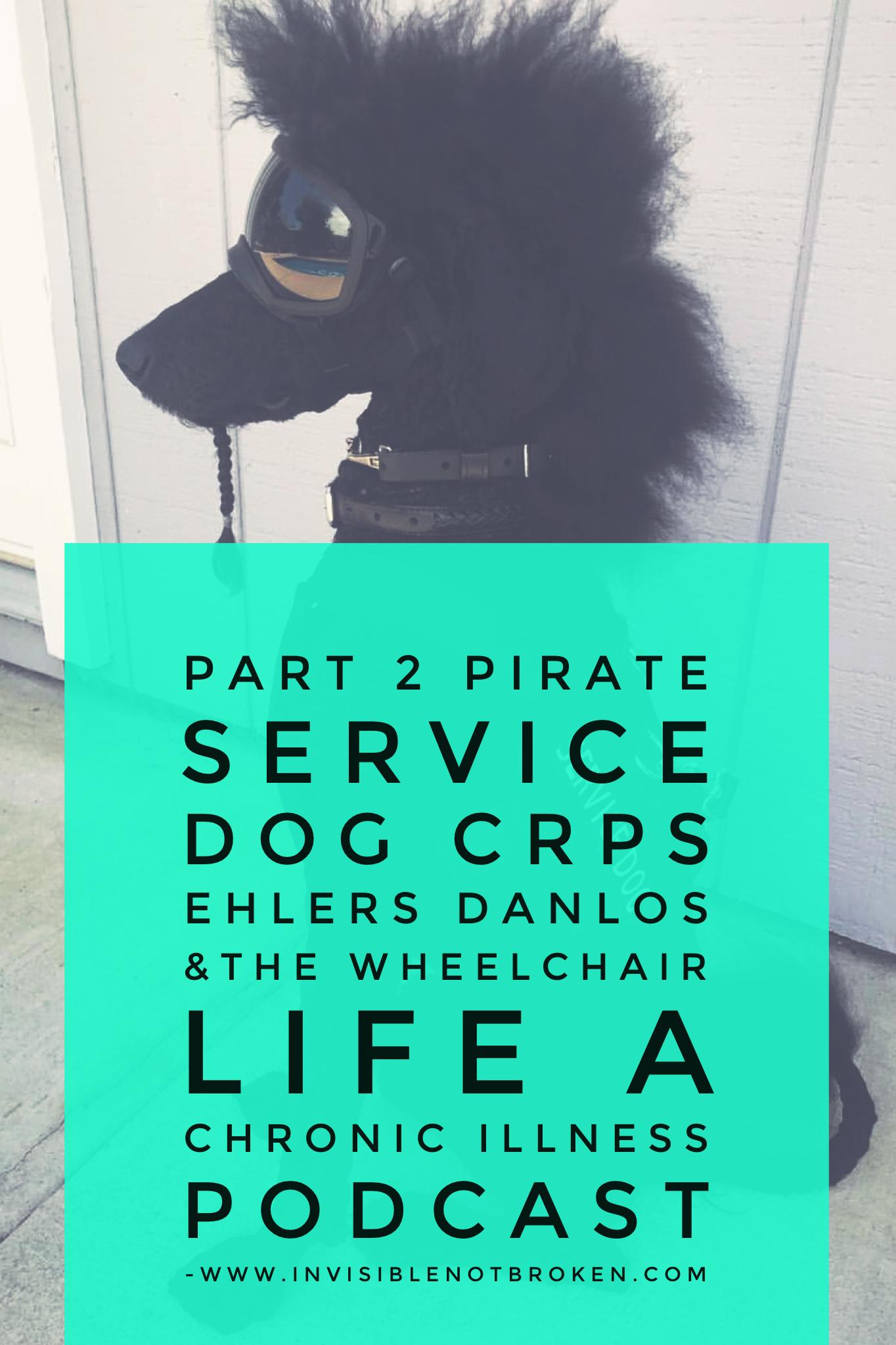 Sirius Black Pirate Service Dog, Wheelchair Life, Ehlers Danlos, CRPS A Chronic Illness Podcast