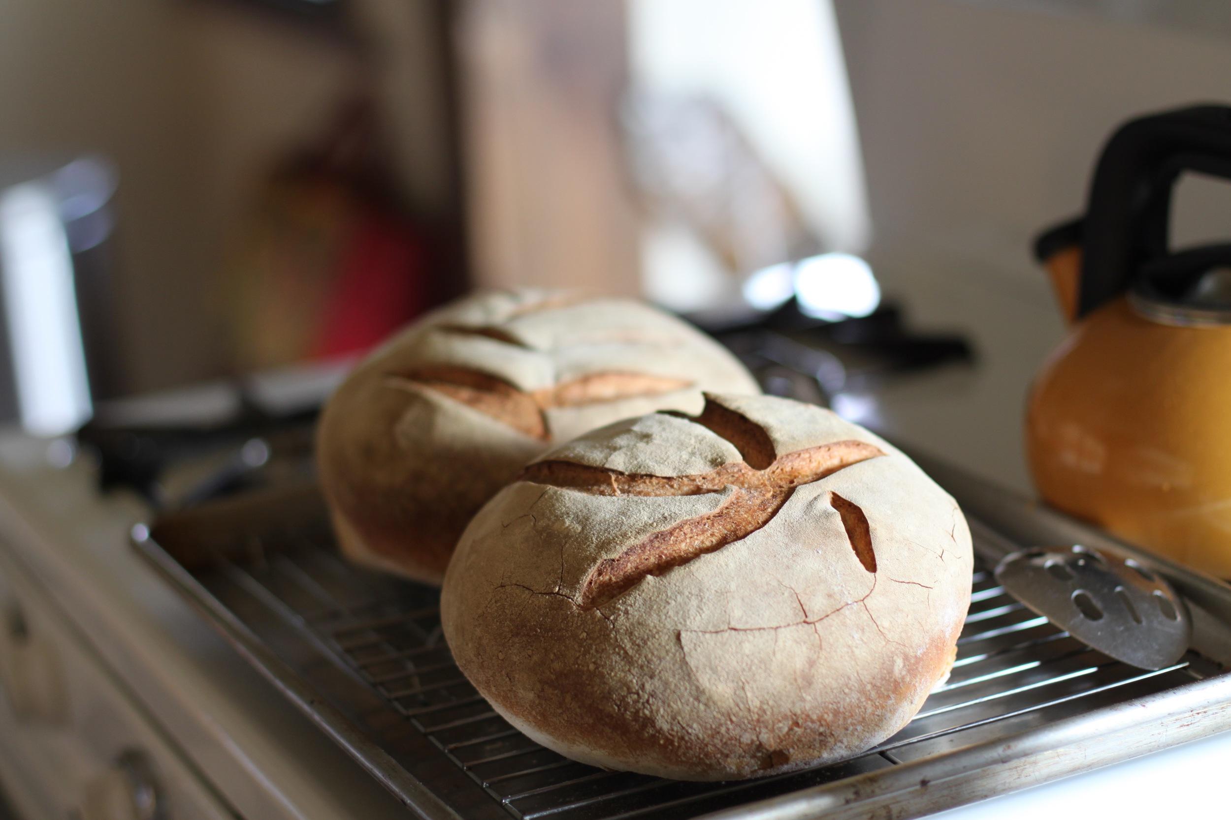 Kitchen-0002.jpg