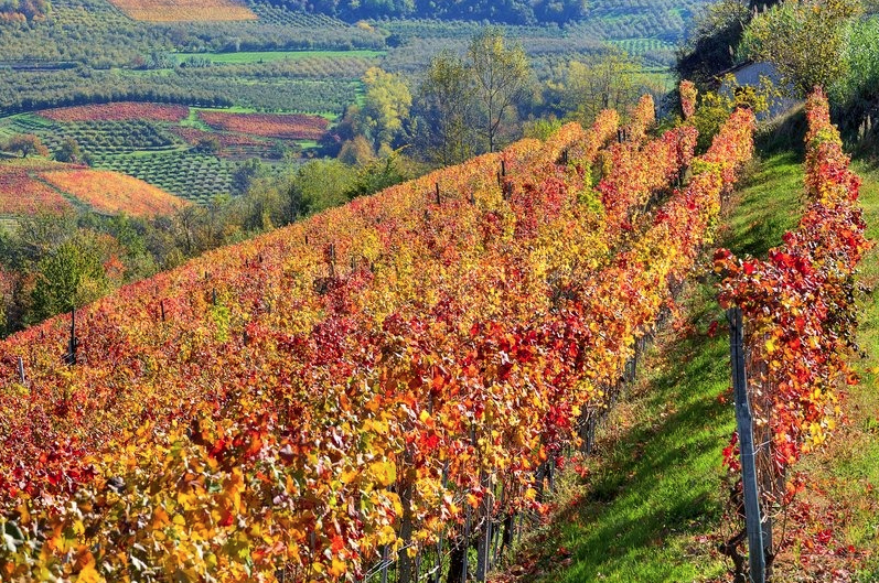 Italy in Autumn, a destination at its best