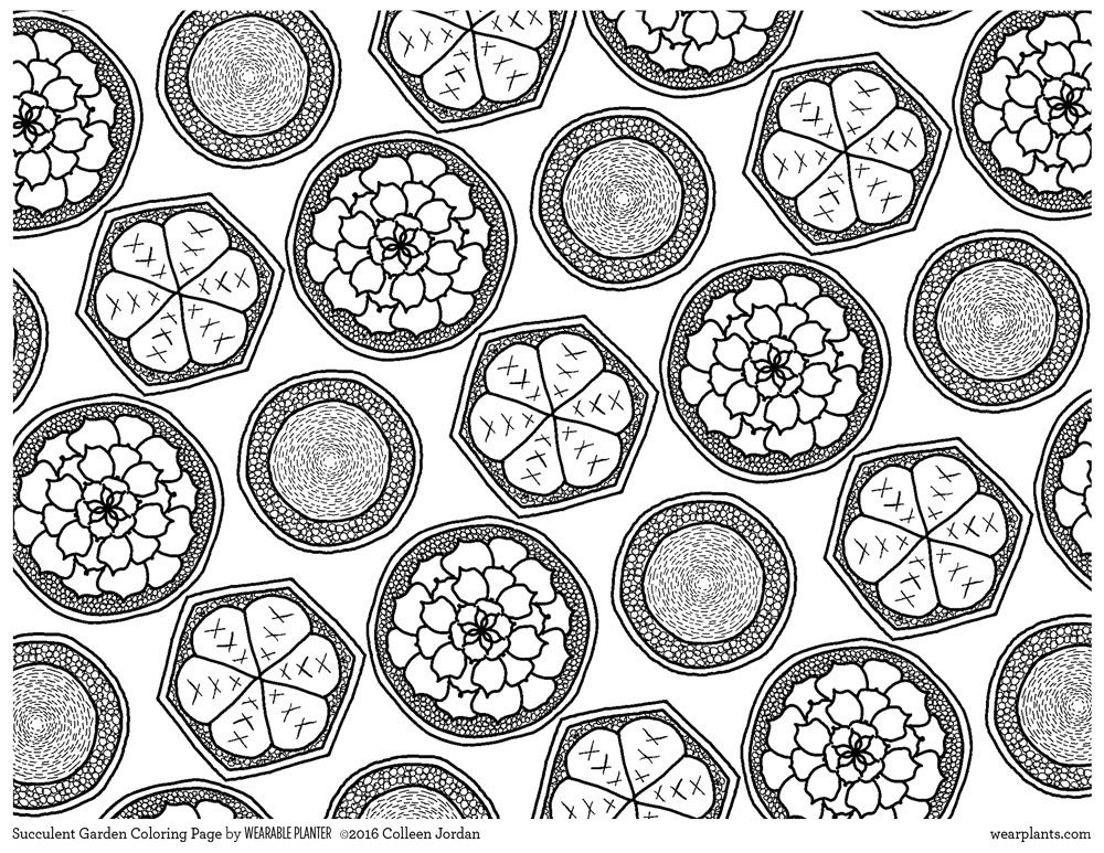 Succulent Garden Coloring Sheet. Click on image to download printable PDF.