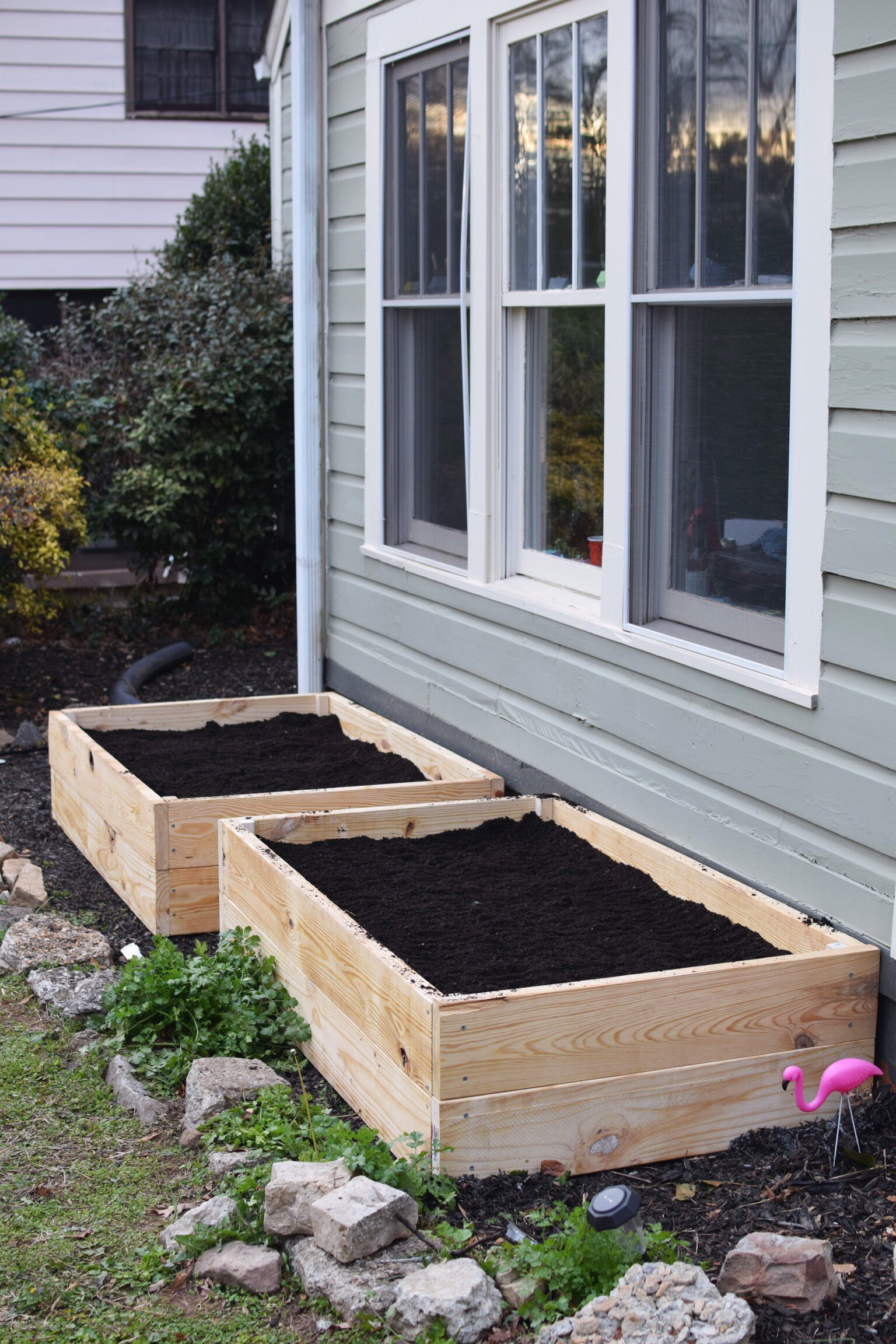 Raised beds ready for planting!