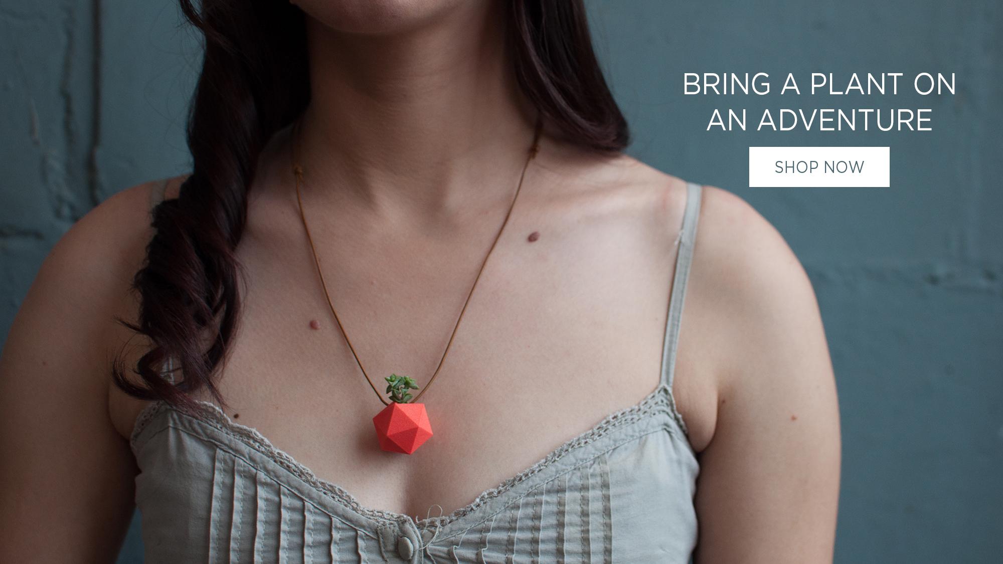 necklacecarousel-1a.jpg