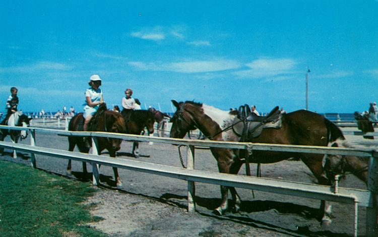 Asbury Boardwalk Pony Rides.jpg