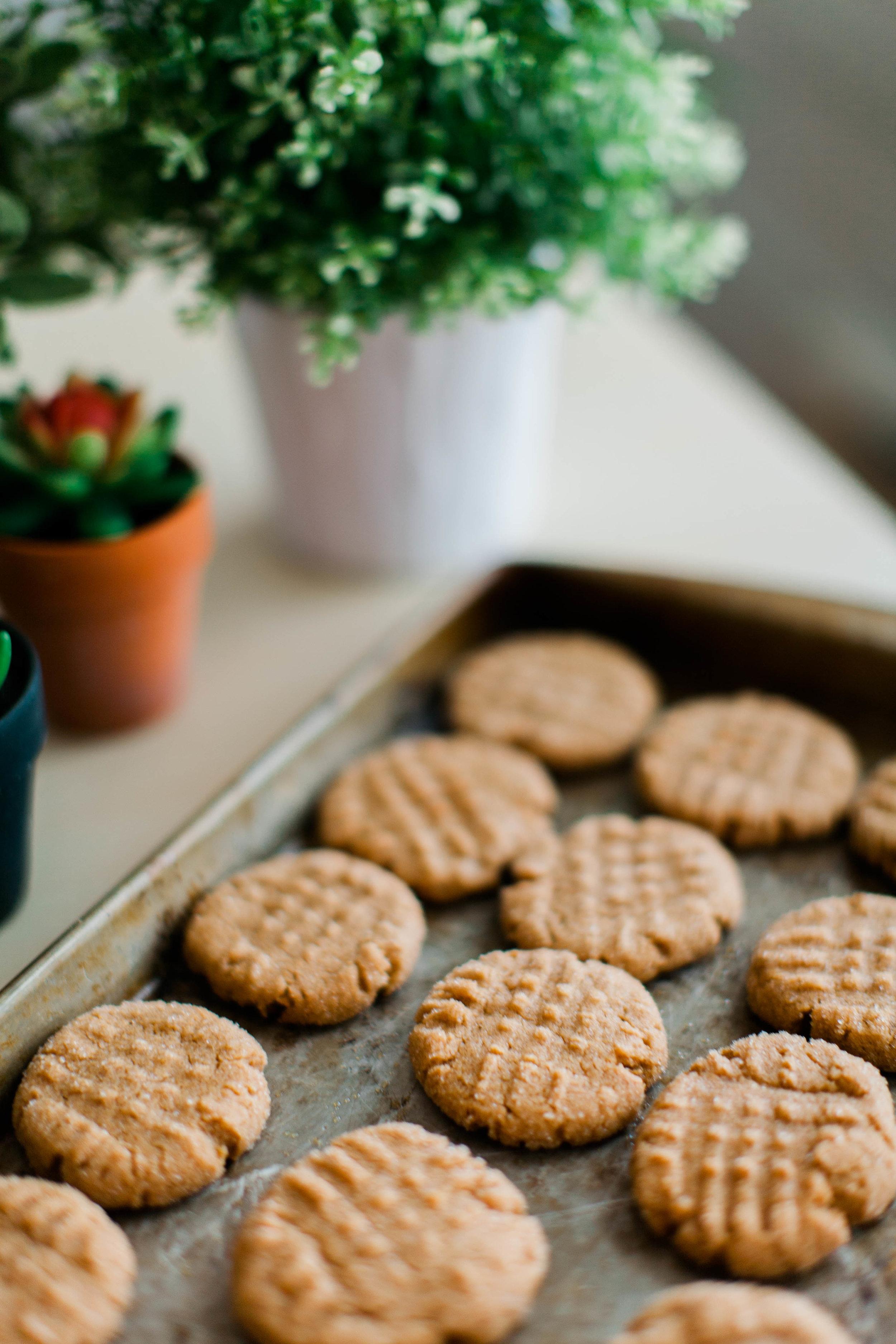 jennahazelphotography-3 ingredient PB Cookies-0057.jpg