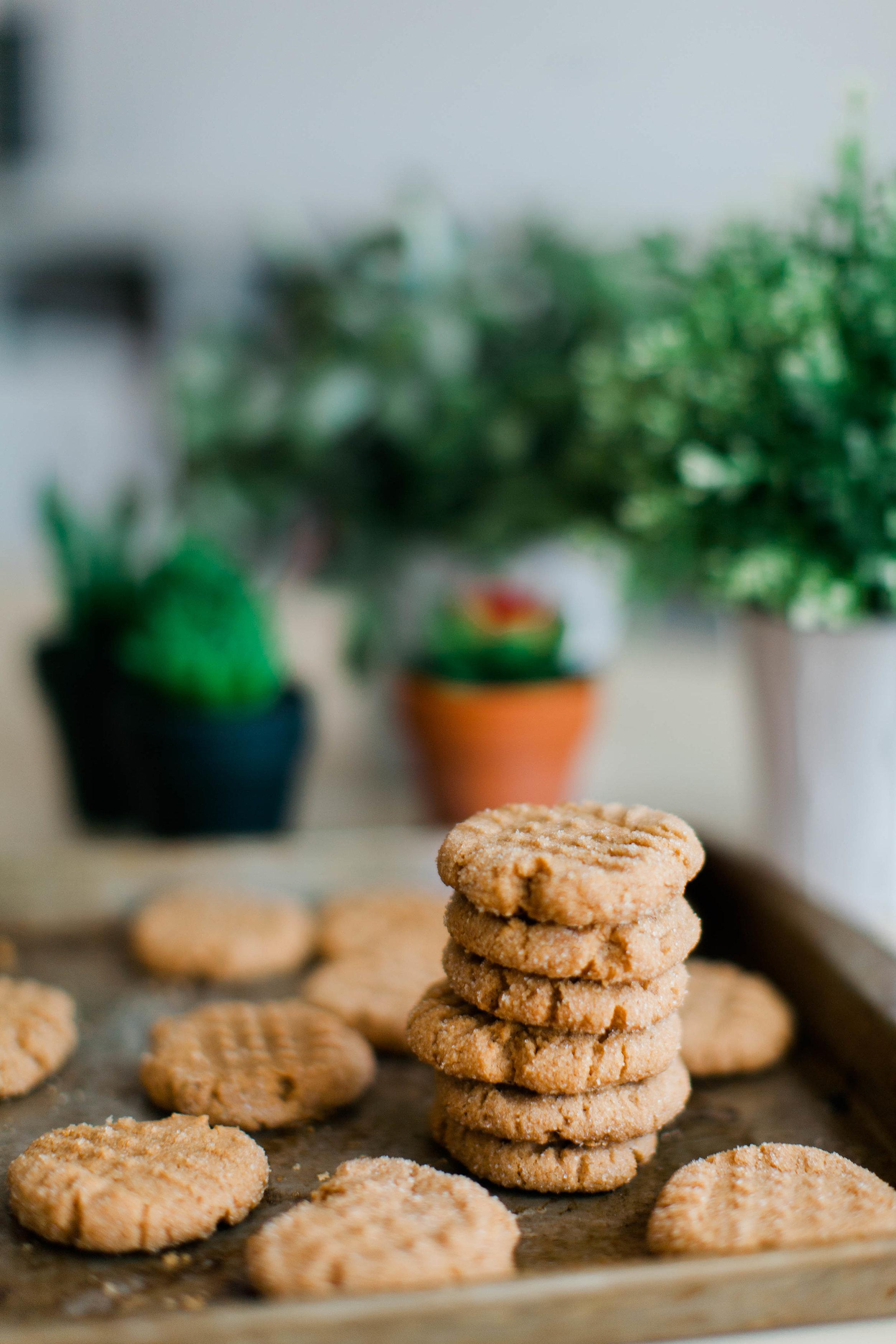 jennahazelphotography-3 ingredient PB Cookies-0058.jpg