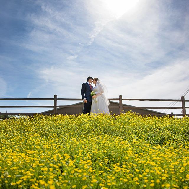 Such a beautiful country wedding for Thomas and Meghan!  So happy to be back in wedding season with this gorgeous spring weather!