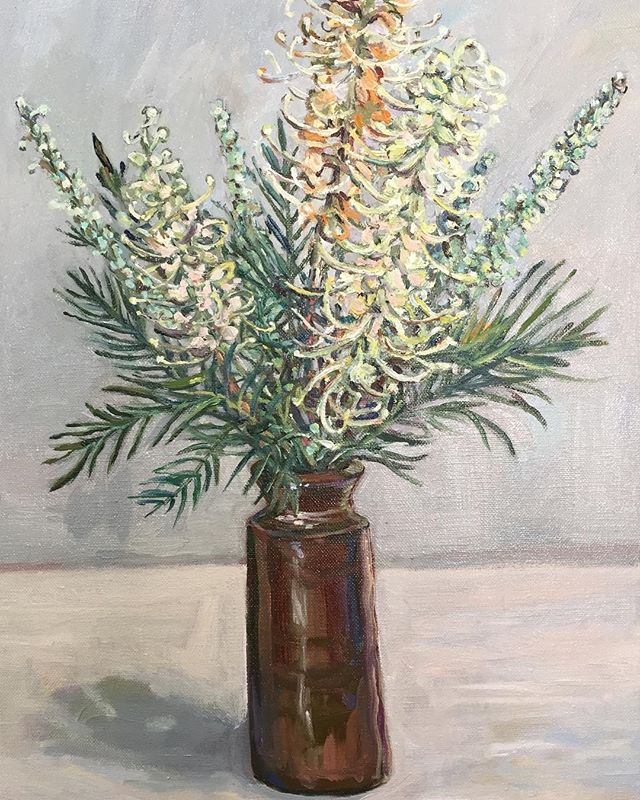 White Grevillea 2019  Oil on Linen 40cms H x 30cms W  Available. #brisbaneartist#brisbanestudio#brisbanegarden#grevillea#homegrown#australiannatives