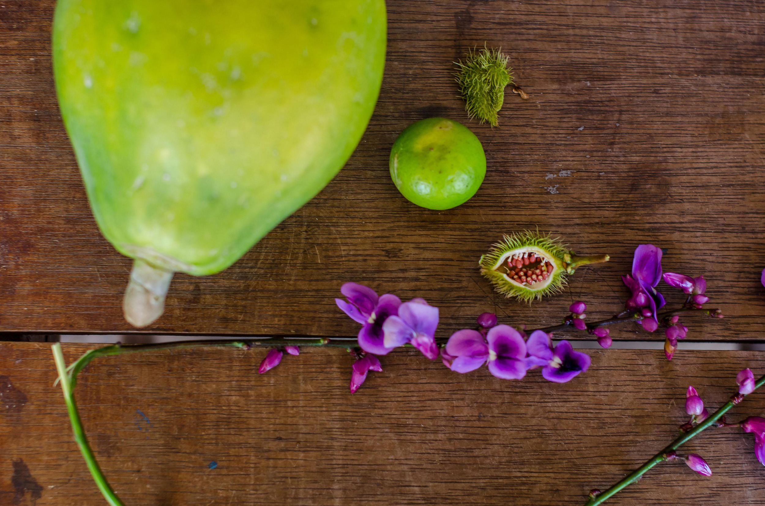 Wild papaya, lime, flowers, and urucum (the fuzzy-looking fruit). Native people used urucum to dye their faces bright red.