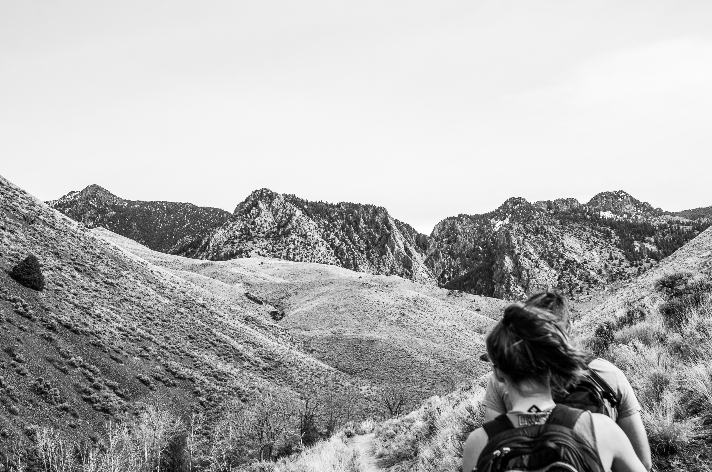 Hiking outside of Salmon, ID with a favorite crew.