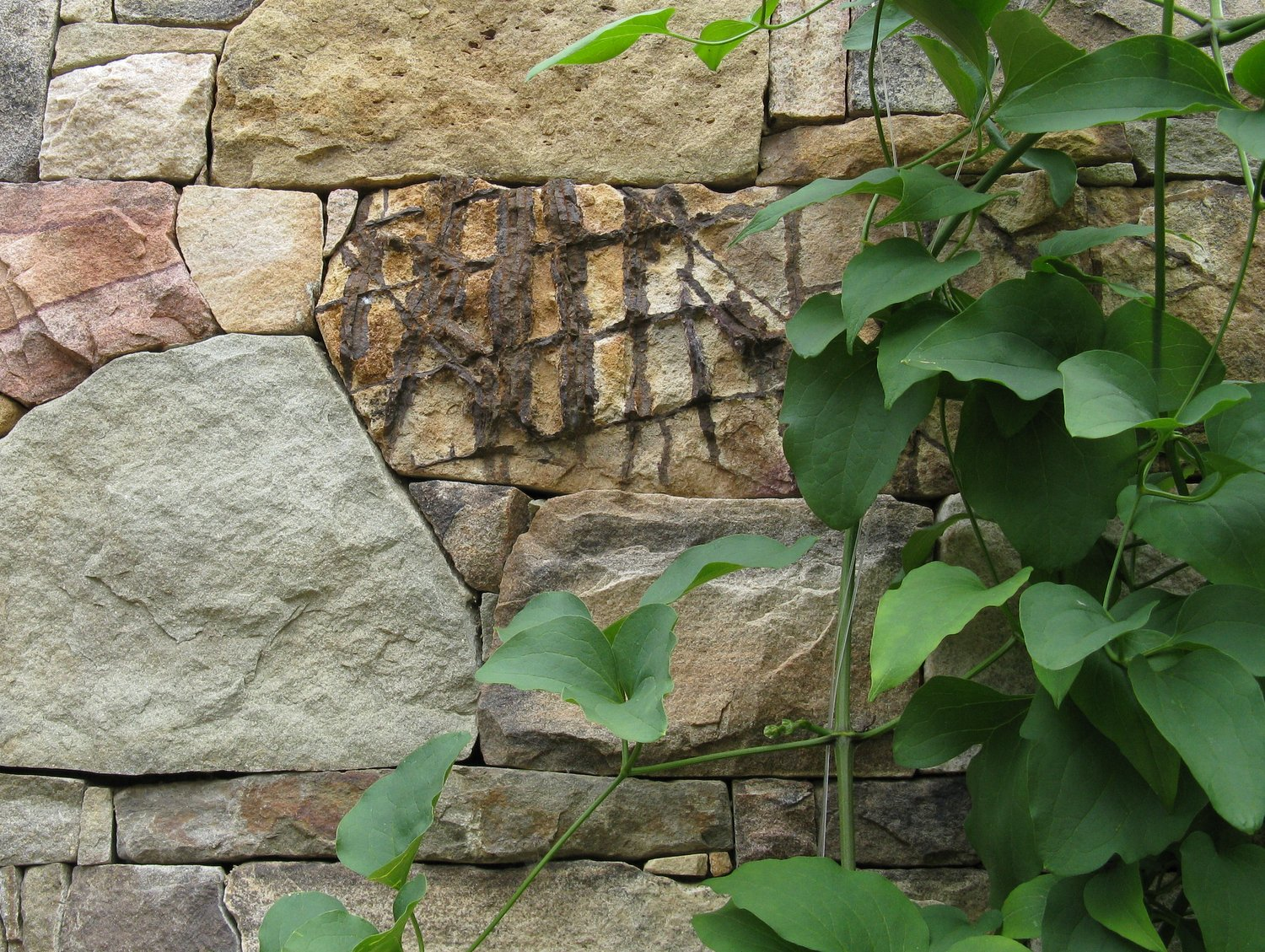 Natural stone imprinted by time