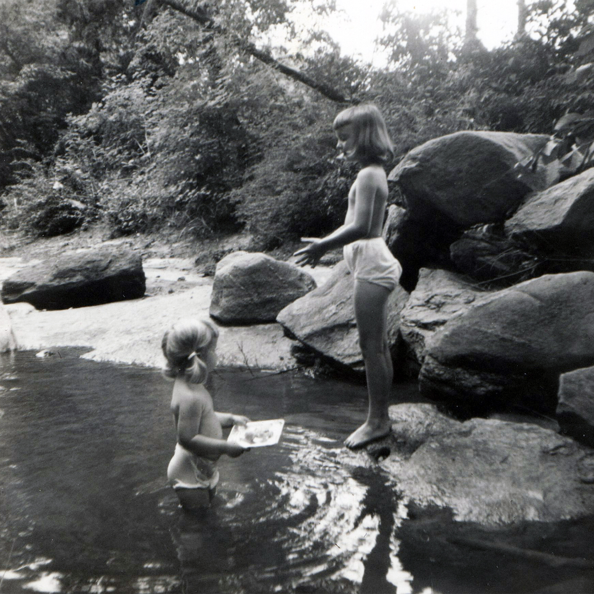 Playing in the creek along Vale Avenue