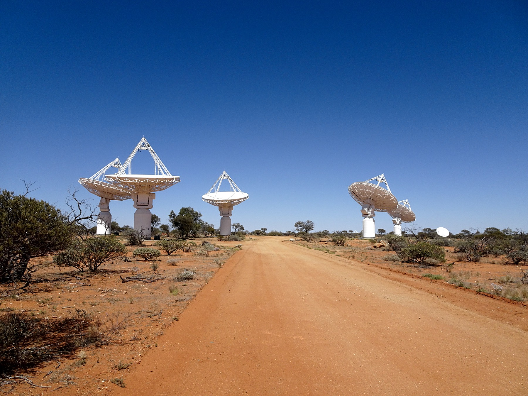 Some of the ASKAP dishes observing for CRAFT in Fly's Eye mode. Image credit: Rob Hollow (CASS)