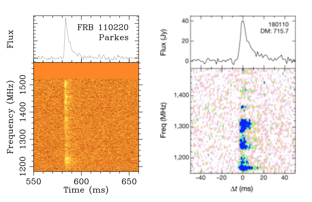 Comparison of the spectrum (emission across the bandwidth) from FRB 110220 detected with Parkes (left) and FRB 180110 detected with ASKAP (left). The brighter, lower DM sample of FRBs from ASKAP show more modulation across the observing bandwidth. FRB 180110 image modified from Shannon et al. (2018). Image credit: Emily Petroff.