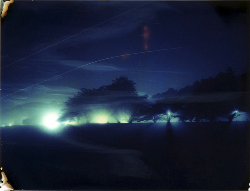 'Cypress at Night with Lights and Fog' from Pictures of Home Polaroid Photograph, 2010.  Photo © Moira McDonald