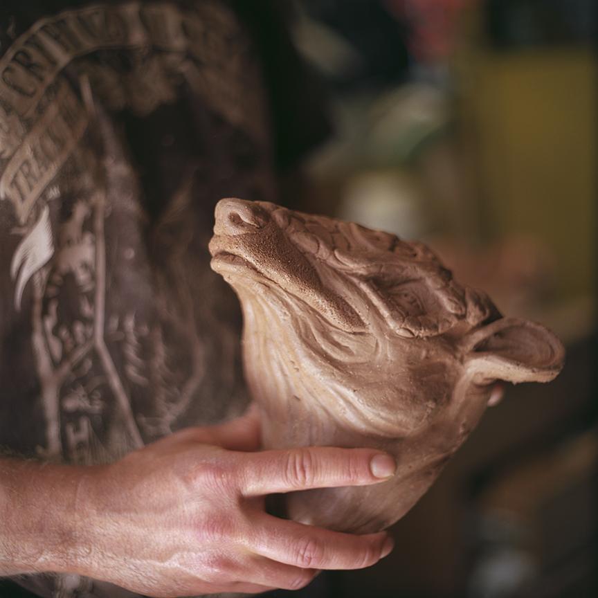 An Armadillo Head. Photo © Aimee Santos