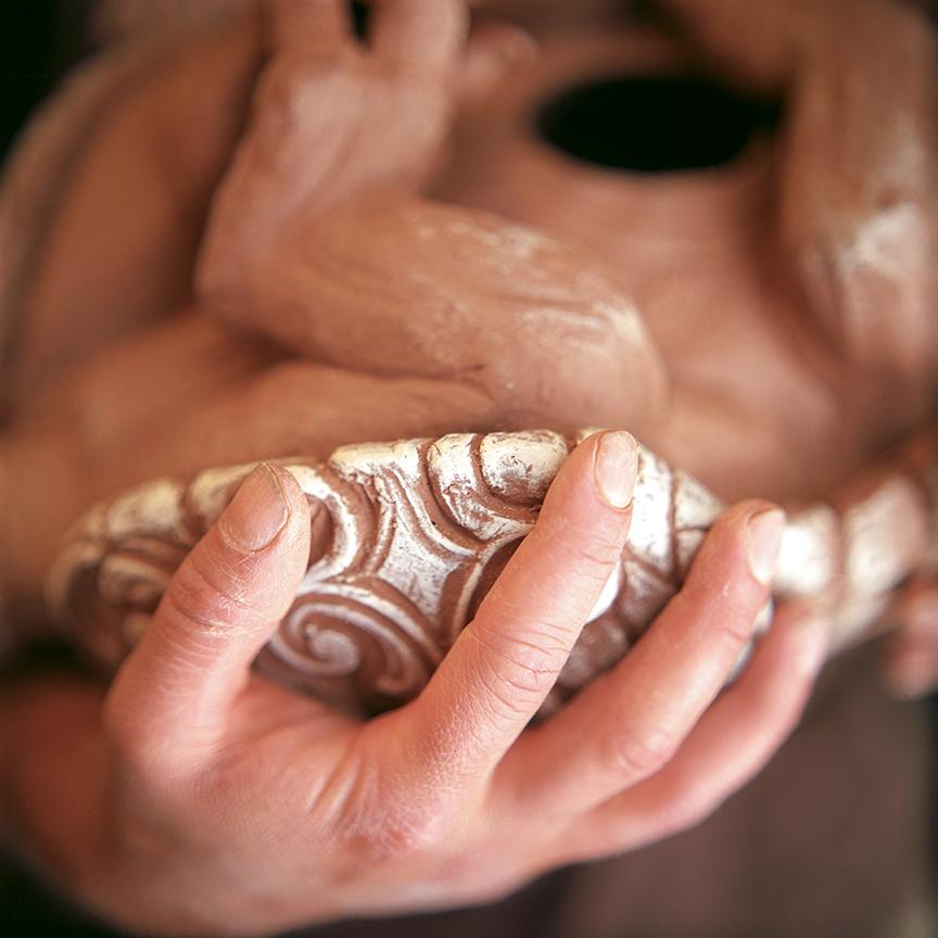 Armadillo body detail. Photo © Aimee Santos