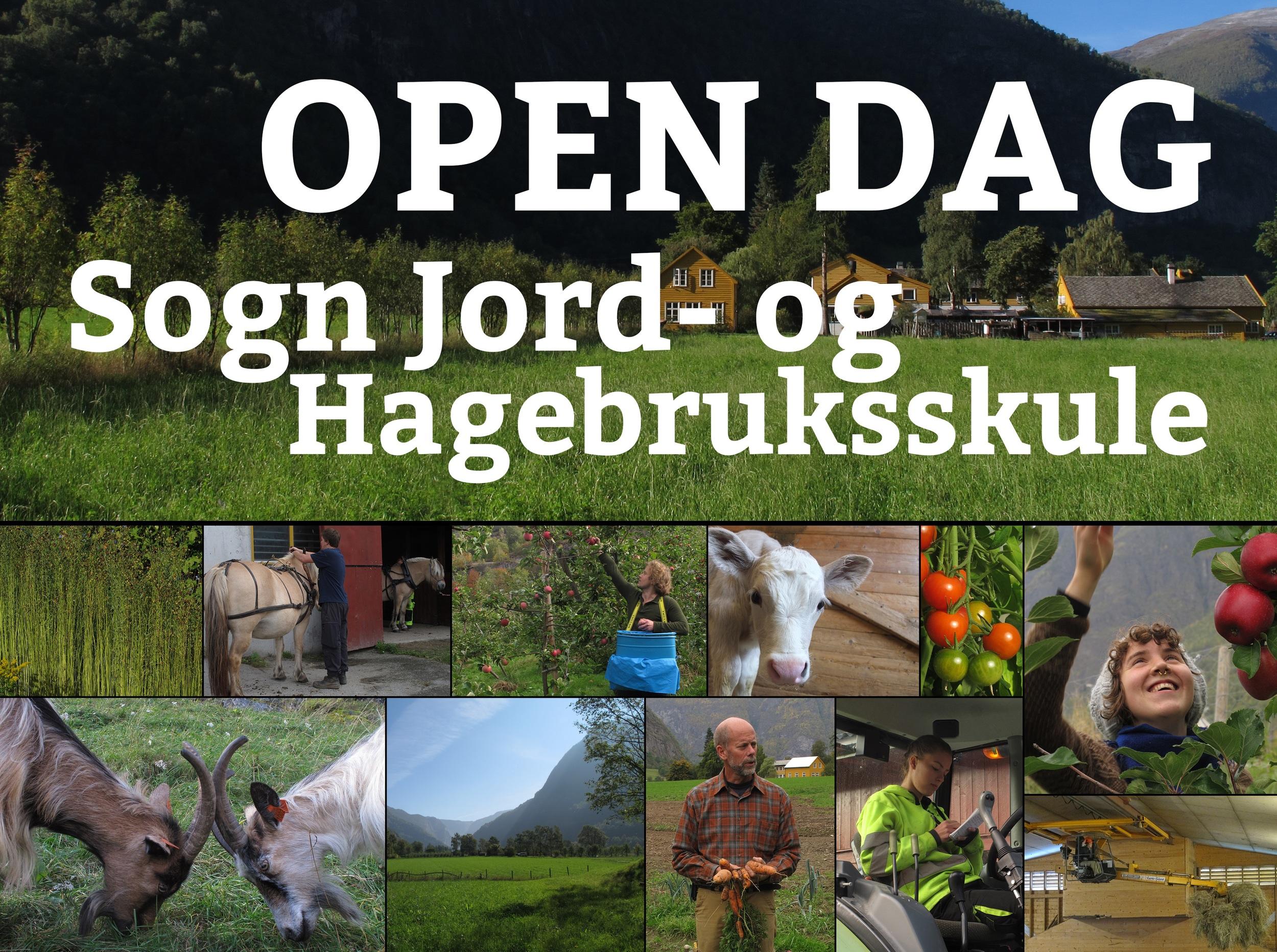 Open dag SJH.jpg