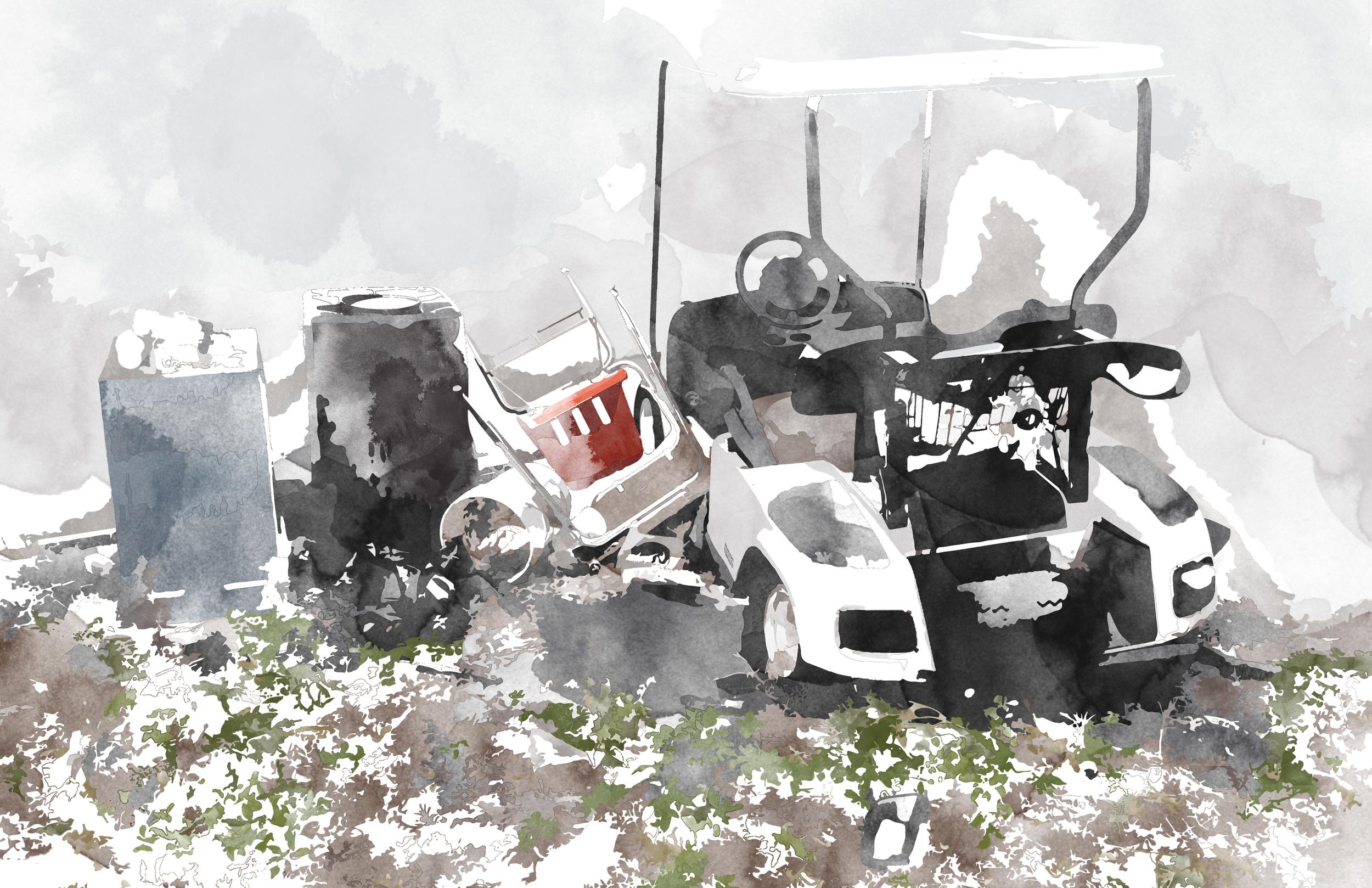 8 Cart.jpg