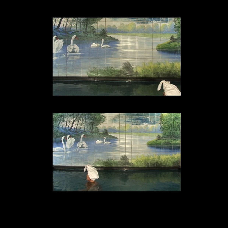 03 Jaye RHEE_Swan_Video.jpg