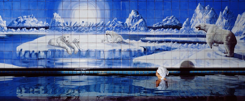 05 Jaye RHEE_Polar Bear_Photo.jpg