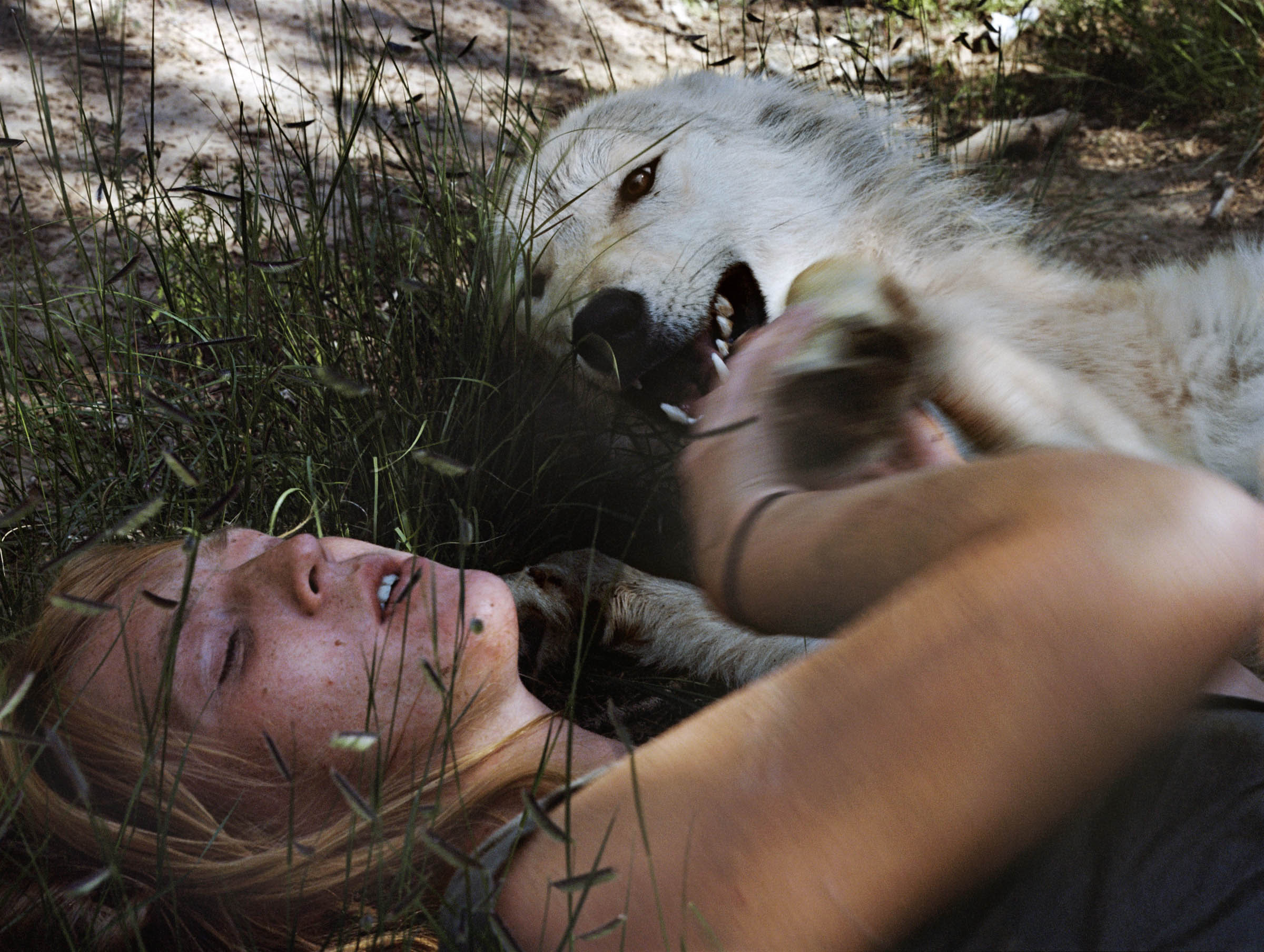 HollyLynton_Angel, Wolf, New Mexico.jpg