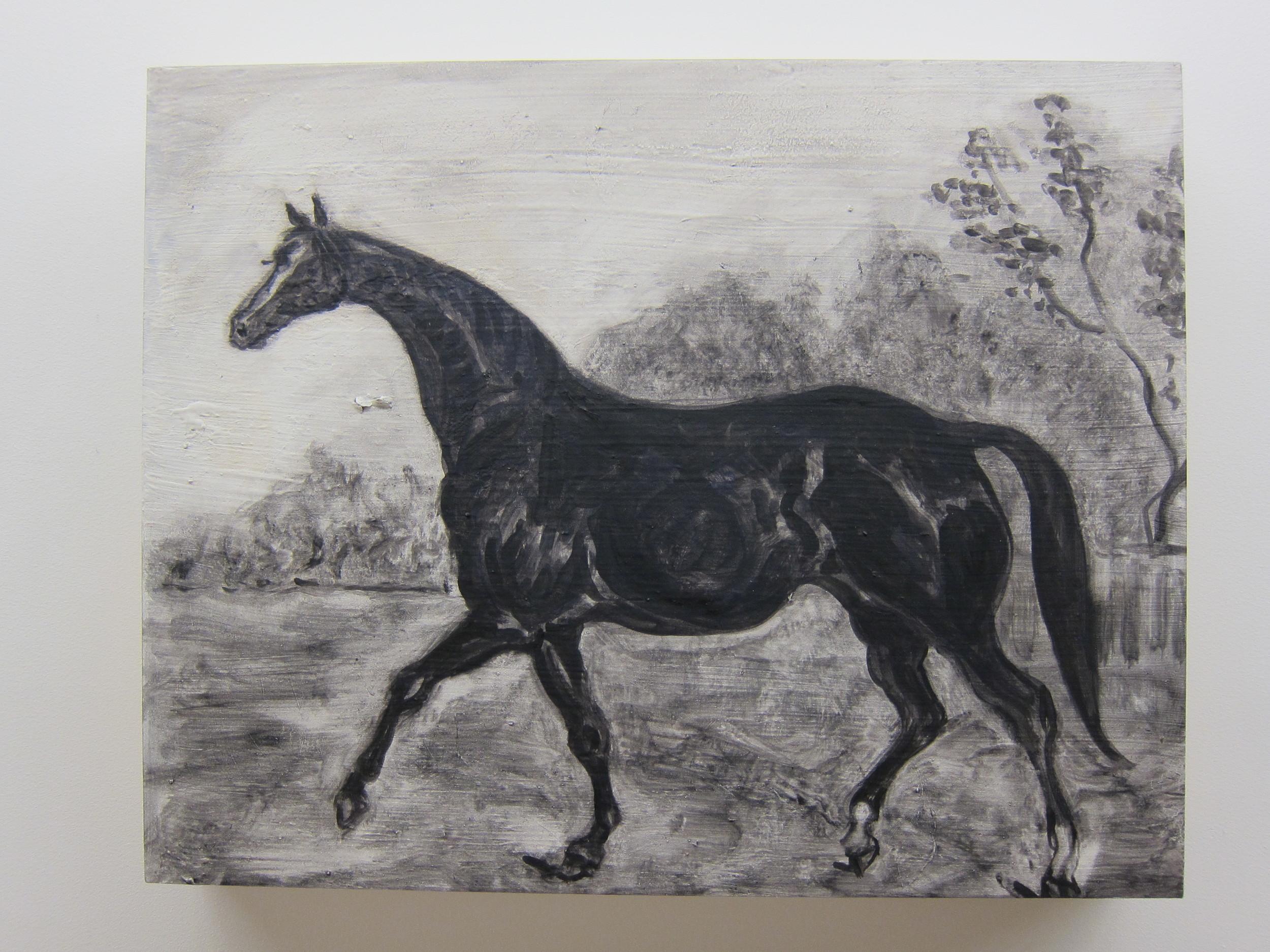 "Shai Zurim Horse Oil on board 16"" x 20"" 2011"