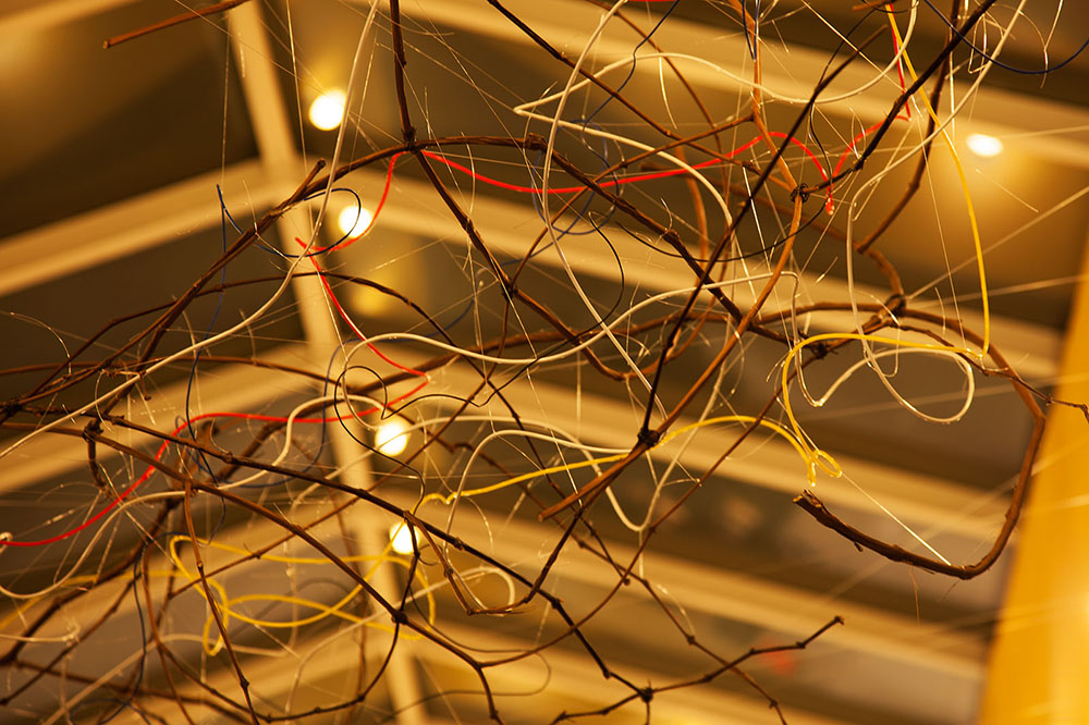 Untitled Mixed Media Installation (vine, wire, monofilament line, vinyl tubing, electric wire) Site-specific [size dimensions]