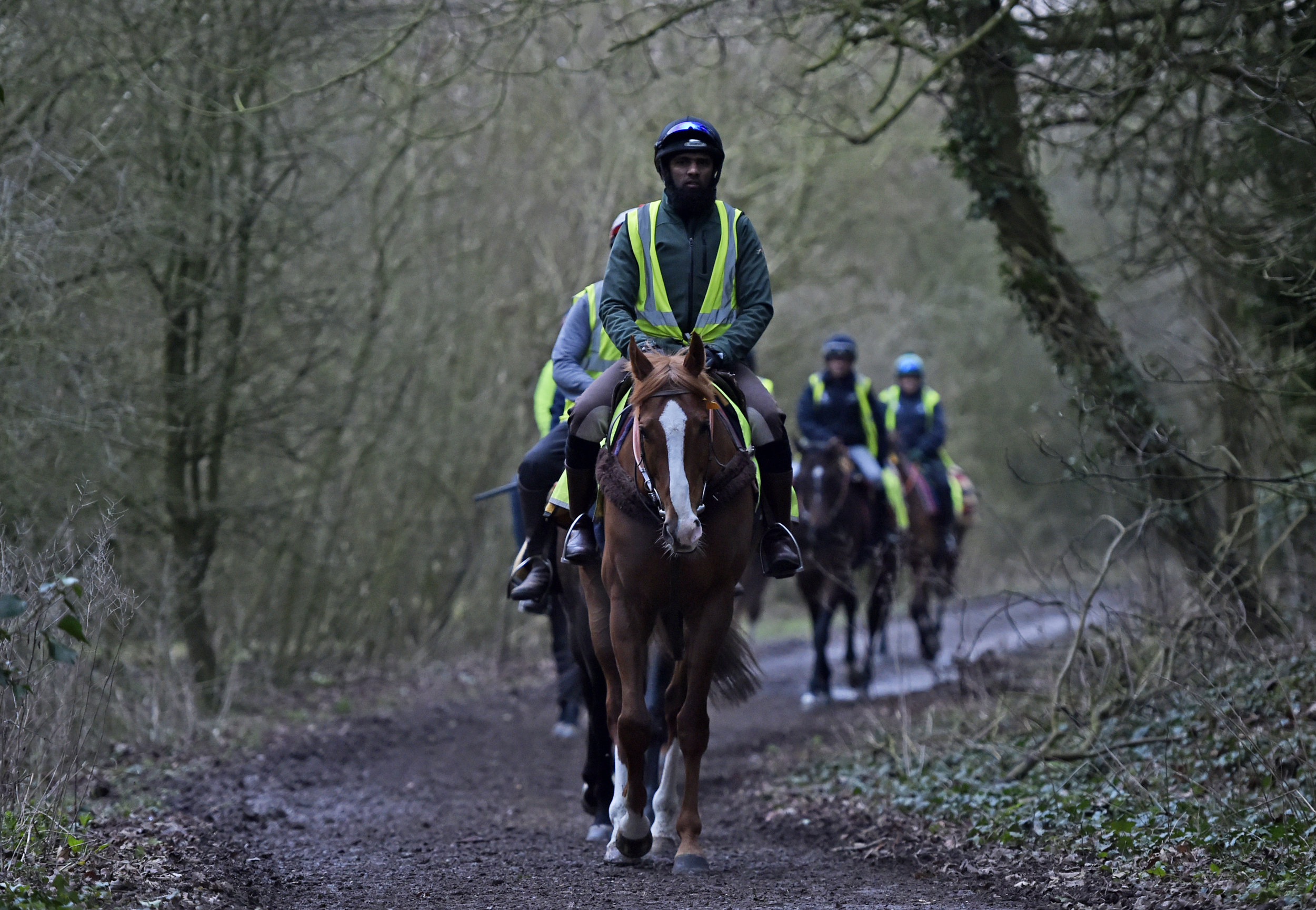 Mohammed Mirza   Mohammed works part time for us at Windsor House, he is also a taxi driver! He has been with us since 2016 and is good with the younger horses, especially the colts. He is pictured on Robin Of Navan walking back from the gallops.