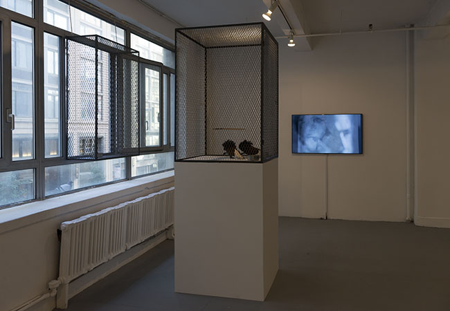 Installation view of As We Were Saying