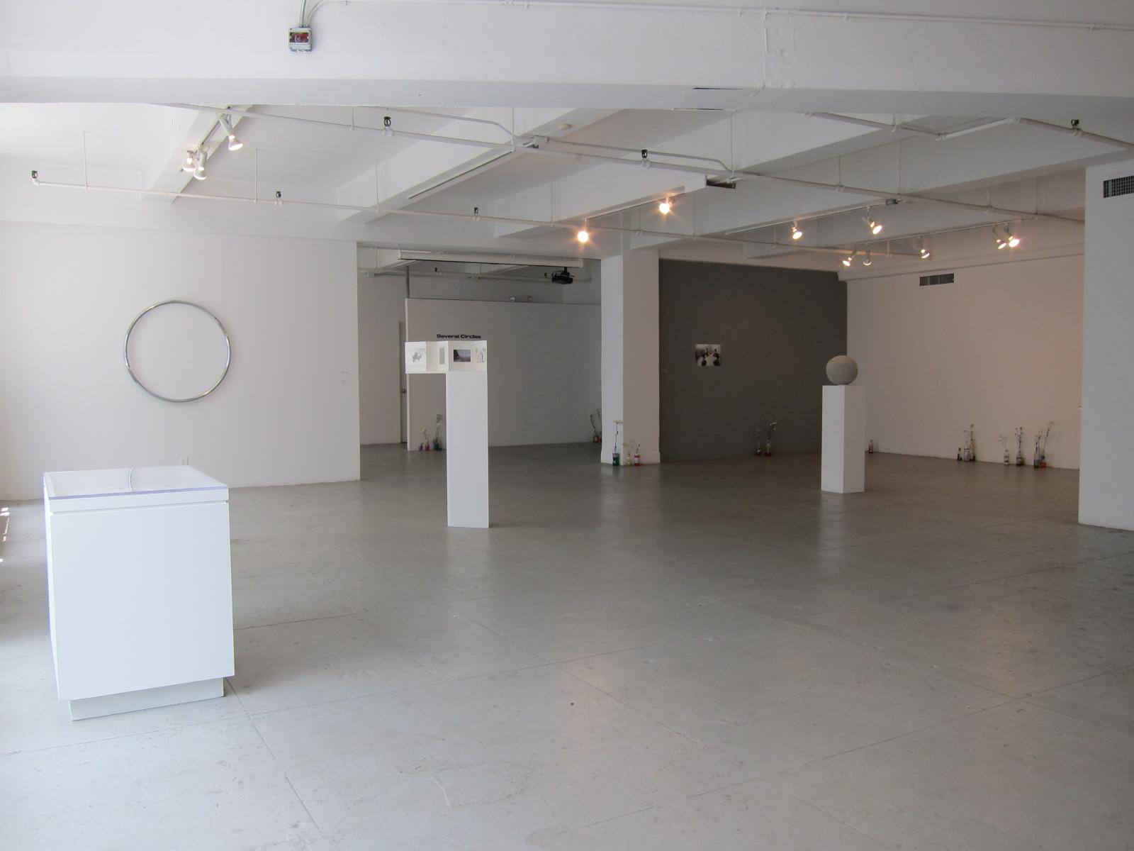 Installation view of Several Circles