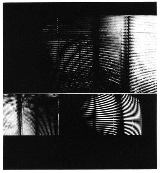Through the Blinds, 2007