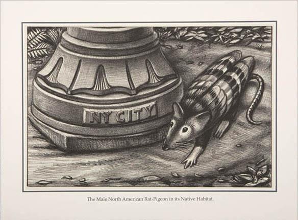 Rat-Pigeon, 2007