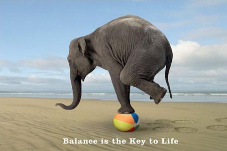 BalanceElephant.jpg