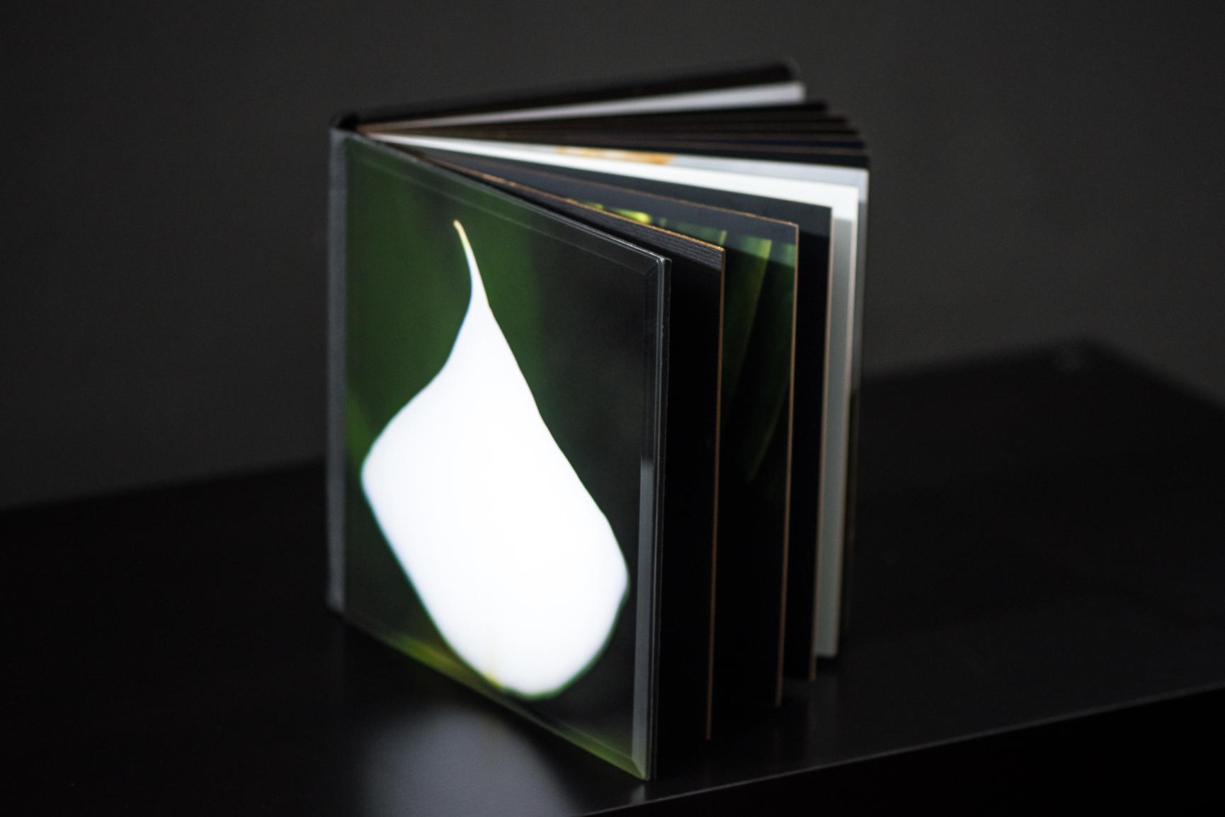 eyeobee ART-Ibrahim Badru-Essence of Peace-Peace Lily-Art Book-13.jpg