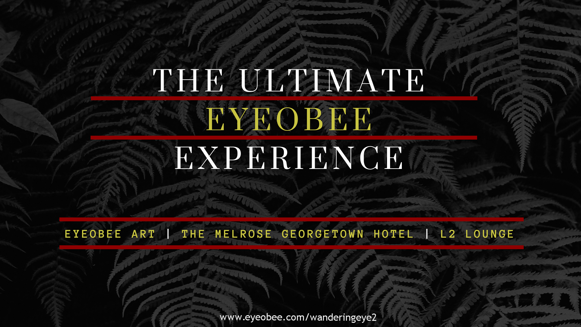 THE ULTIMATE EYEOBEE EXPERIENCE EYEOBEEART THE WANDERING EYE THE MELROSE GEORGETOWN HOTEL L2 LOUNGE GEORGETOWN DC